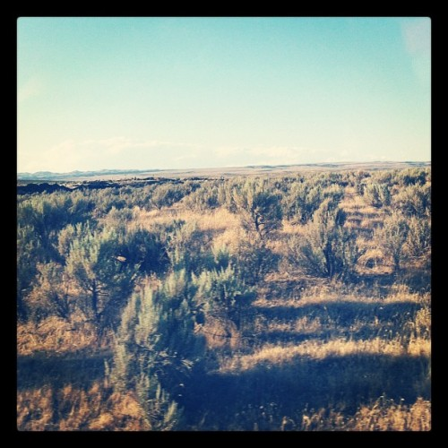 Sagebrush forever.  #Idaho (Taken with Instagram at I 84 west in idaho)