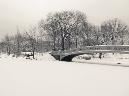 "Bow Bridge in the winter. Central Park. New York City.  I miss the snow.  I miss the silence: deafening silence punctuated by small breaths signifying flutters of life in a world swallowed by the sinking, seductive embrace of serenity.  That type of serenity isn't easy to come by in a city that moves faster than the speed of hope: it's frenetic core blinked into existence by anxious dreamers.  If I hold still, very still, for just a moment and close my eyes, I can paint my serenity memory on the backs of my eyelids.  In this moment the world stops rotating long enough and my breath reverberates alongside the earth's heartbeat.  —-   View this photo larger and on black on my Google Plus page  —-  Buy ""Serenity Memory - Bow Bridge in the Snow - Central Park"" Prints here, email me, or ask for help."