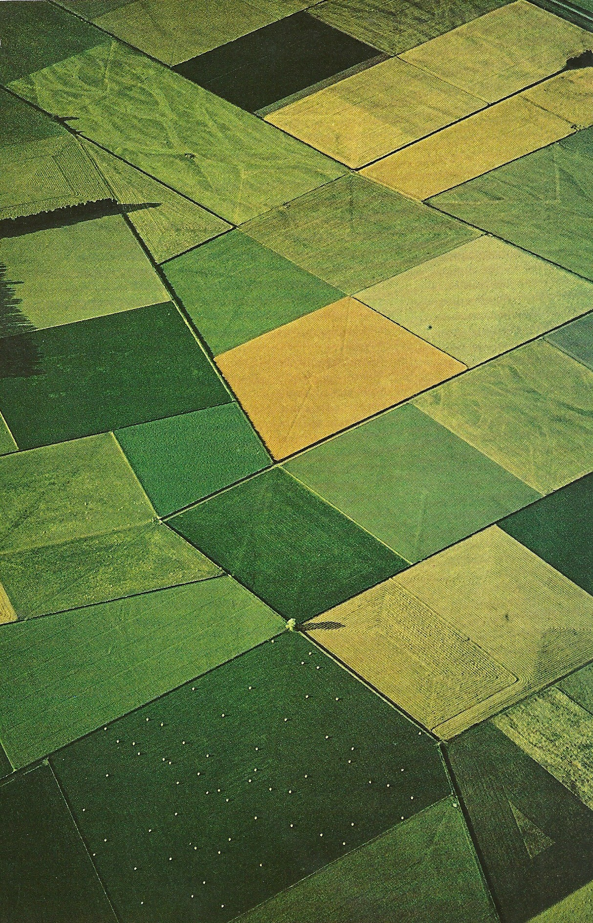 vintagenatgeographic:  Canterbury Plains, New Zealand National Geographic | January 1972