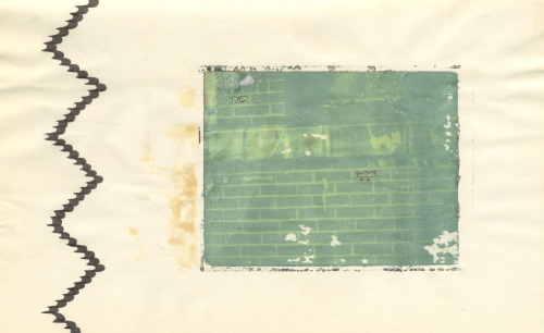 Polaroid Negative Transfer