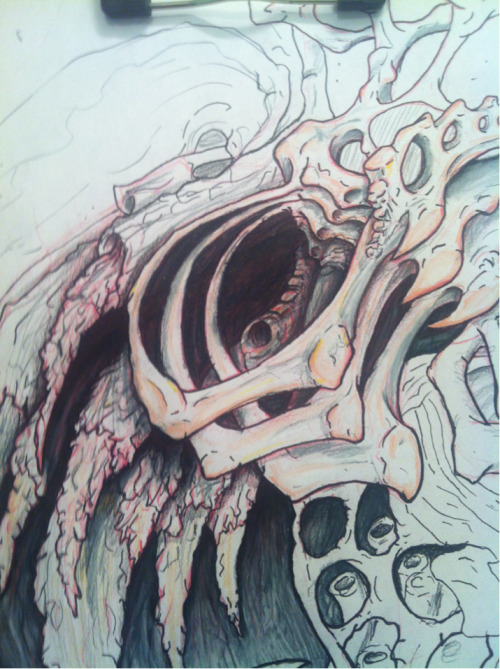Close up of a portion of the progress on my boneish biomech drawing oh and today's my birthday I'm old.:(