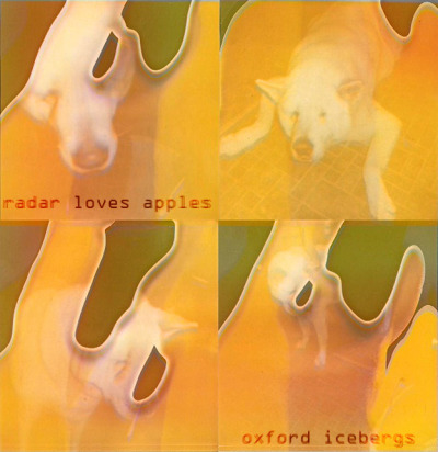 http://oxfordicebergs.bandcamp.com/album/radar-loves-apples  radar loves apples - oxford icebergs