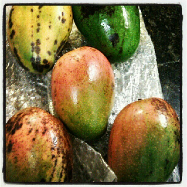 Mommie's mangos :-) … thanx ma! #Fruit #nutrition #food #organic #foodie #Foodporn #Health  (Taken with Instagram)