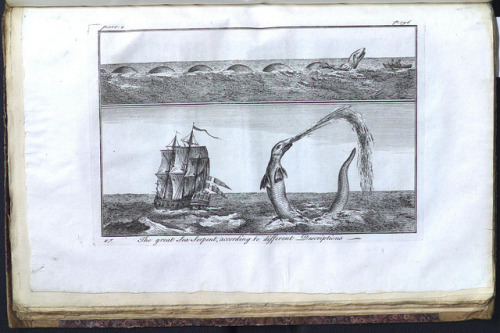 The great Sea Serpent, according to different Descriptions by Library & Archives @ Royal Ontario Museum on Flickr.