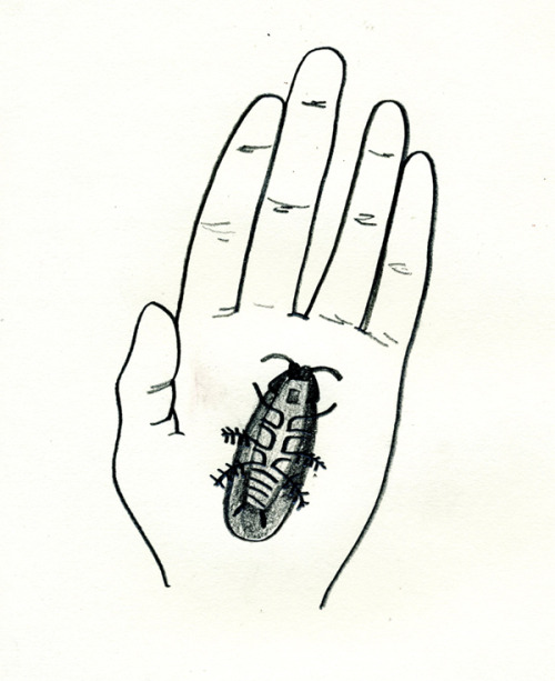 still life : left hand with roach