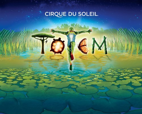 (via Photos for Cirque Du Soleil - Totem | Yelp)