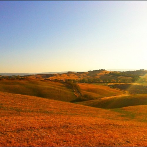 The amazing Tuscan landscape (no effects). #italy #tuscany #landscape #ladolcevita #red #sunset #cypress #hills #desert #sky #beauty #photo #nature #iphone #iPhoneonly #noeffects #trees #sunlight  (Taken with Instagram)