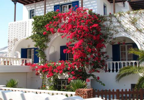 Lovely colours in Santorini