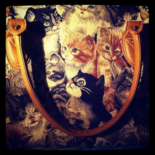 My new bag #cat #kitten #kitsch #katzen #tapetry #retro  (Pris avec Instagram)