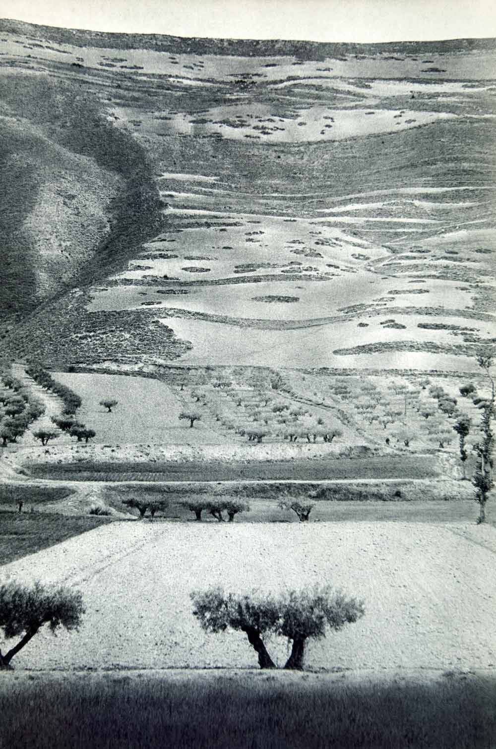 firsttimeuser:  landscape in Castile, Spain, 1950s photo by Henri Cartier-Bresson