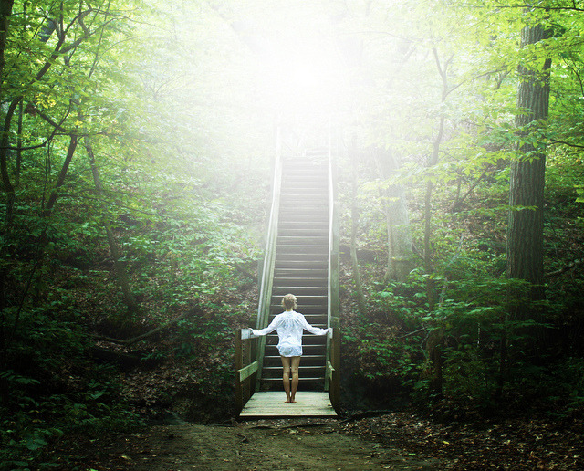 annaharo:  Stairways in the Green by Atychiphobia on Flickr.