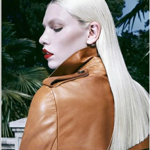 Vixen @alineweber_real #platinum #bazaar #sex#lips #fashion #haircolor #wellaprofessionals #color #paintedbyme #auracolorist  (Taken with Instagram)