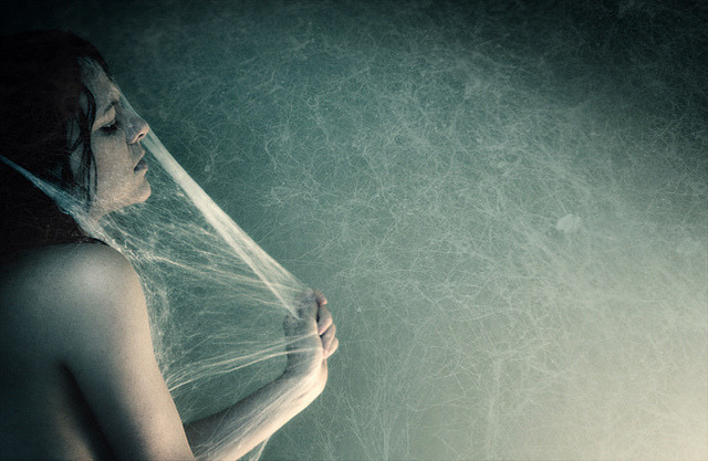 cocoon by =anja= on Flickr.