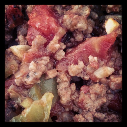 Day 3 Dinner: Paleo Sloppy Joes with Fire roasted Tomatoes and Green Chilies….