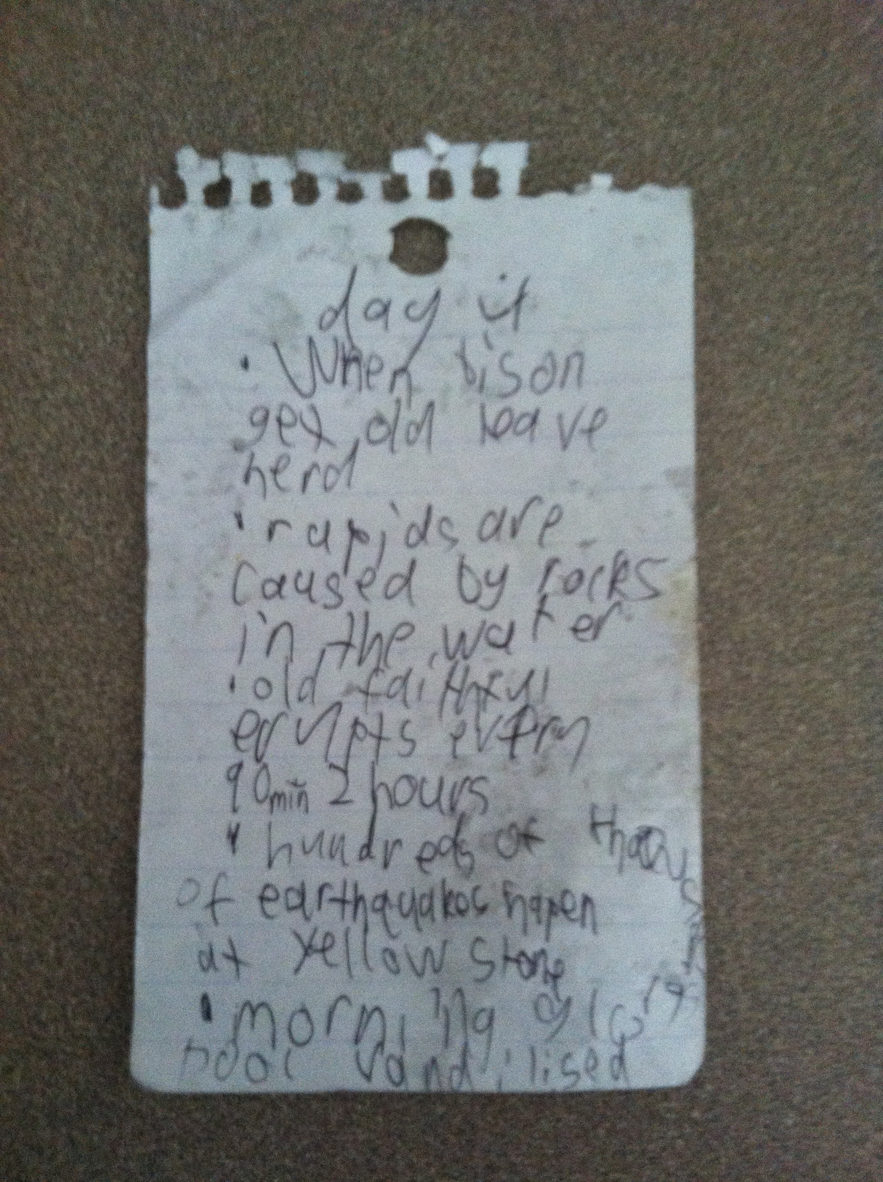We found this piece of paper on in the grass near the picnic table outside of our house. I don't know who this kid is, but clearly, he/she is my spirit animal. Meticulous notes for Day 4 of his/her Yellowstone trip.  Did you know that hundreds of earthquakes happen at Yellowstone? Well now you do, courtesy of this super awesome kid.
