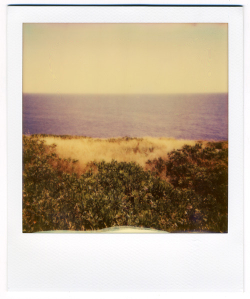 kochalka:  A polaroid I took while on Monhegan Island in Maine.  I was trying to capture the stripes of color that I saw, knowing that the quirkiness of the Impossible Project polaroid film would mean that the photo would differ greatly from what I actually saw in front of me.  But that's true with any photo, really, isn't it?