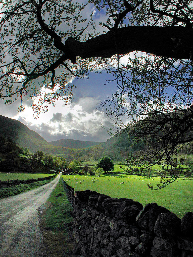 bluepueblo:  Summer, Cumbria, England photo by robert  :packs baggages: