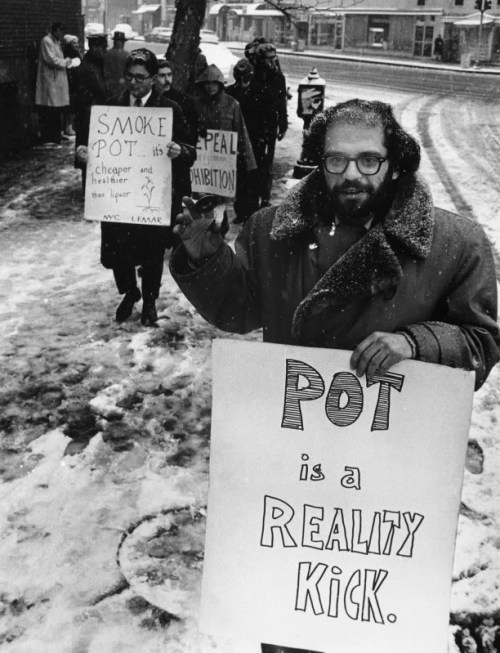electripipedream:  Pot is a Reality KickAllen Ginsberg1965