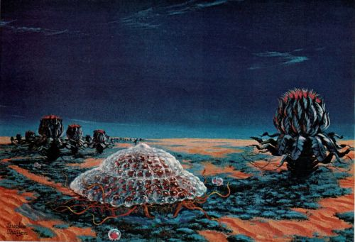 "vintagenational:  Painting by Douglas Chaffee in consultation with Carl Sagan. From ""Mars,"" written by Carl Sagan, National Geographic, December, 1967.  If Martian life exists, its higher forms might look somewhat like these, [Carl Sagan] conjectures. Shielded from ultraviolet radiation by a glassy shell, an animal gorges on mossy ground cover among plants with cabbagelike tops. Outer leaves close at night to protect buds from cold. Like the ground cover, these plants have developed an ultraviolet tolerance. Others, lacking such immunity, wear transparent bubbles.  Man, I can't wait for Curiosity to come across these guys!"