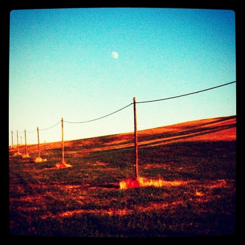 Continually beneath the moon, Tuscany. #italy #tuscany #orange #electric #poles #moon #blue #sky #serial #field #countryside #beauty #landscape #cable #composition #iphone #iphoneonly #photography #saturation #ladolcevita  (Taken with Instagram)