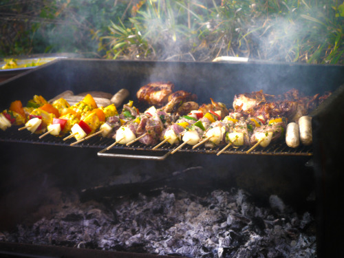 Some of the BBQ's, aka Braai's, are so good, they are worth blogging about!!