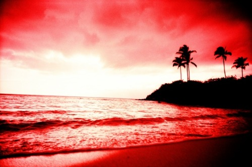 lomographicsociety:  Lomography Tag of the Day - pacific ocean  The sand, the sea, and you. All pink!