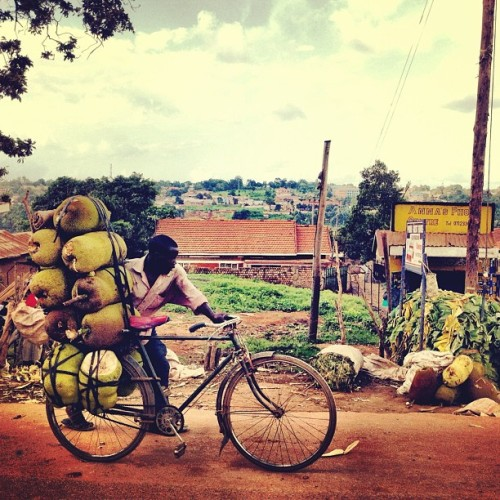youwillseesoon:  Bicycles can do a lot in Uganda #kampala #uganda #bicycle #africa #travel (Taken with Instagram)