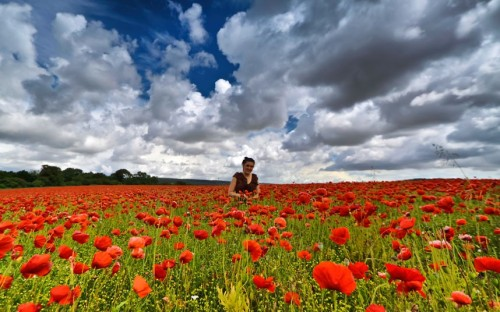 David Jacobs took this photo of his daughter Becky standing in a poppy field in Eartham, West Sussex. If you have a photograph you'd like us to consider for a picture gallery, please email it to mypic@telegraph.co.uk, supplying a little info on where and when the picture was taken. Picture: David Jacobs (via Pictures of the day: 1 August 2012 - Telegraph)