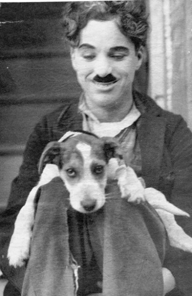 fuckyeahchaplin:  Charlie on the set of the kid with the dog who plays the angel pup in the dream sequence in The Kid c.1921  Another of my favourite Charlie candids. I re post this one every so often!