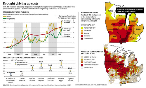 Graphic: Drought, crops and food costs. Read the story here.