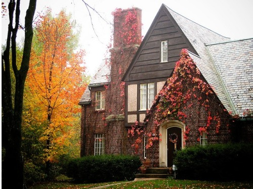 dulcetreverie:  My future home.  Something beautiful with a few creeping vines and a warm, cozy atmosphere.