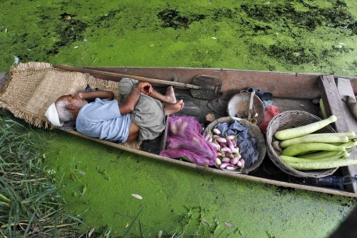 A Kashmiri vegetable vendor took a nap in his boat on Dal Lake in Srinagar, India on Monday July 30, 2012.