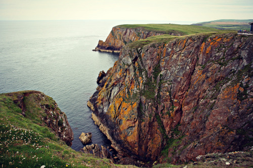 woodendreams:   (by -Kieran Wakefield-)