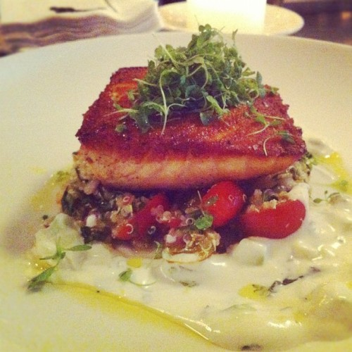 Special at the East Village tonight: pan roasted salmon w/ tomato basil tabouli, cucumber mint lemon yogurt $26 #food #themermaidnyc #nyc #restaurant (Taken with Instagram at The Mermaid Inn)
