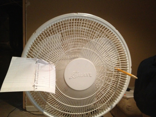 feralinstinct:  One of my fans asking for an autograph