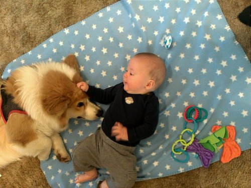 einthecorgi:  Oh you know, just babysittin.