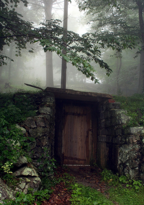 cpt-nobeard:  This reminds me of the Cave and, therefore, makes me miss camp!