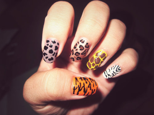 Animal Print.Made by: l0vedonnaa.tumblr.com