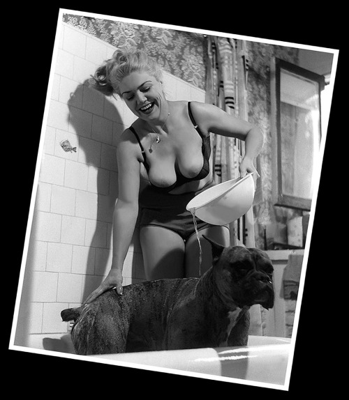 "burleskateer:  Jennie Lee gives her pet dog (""Duke"") a bath during this Nudie-Cutie photoshoot intended for ""The Bazoomers""  fan club.."