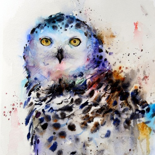 myampgoesto11:  Watercolor animal paintings by Dean Crouser