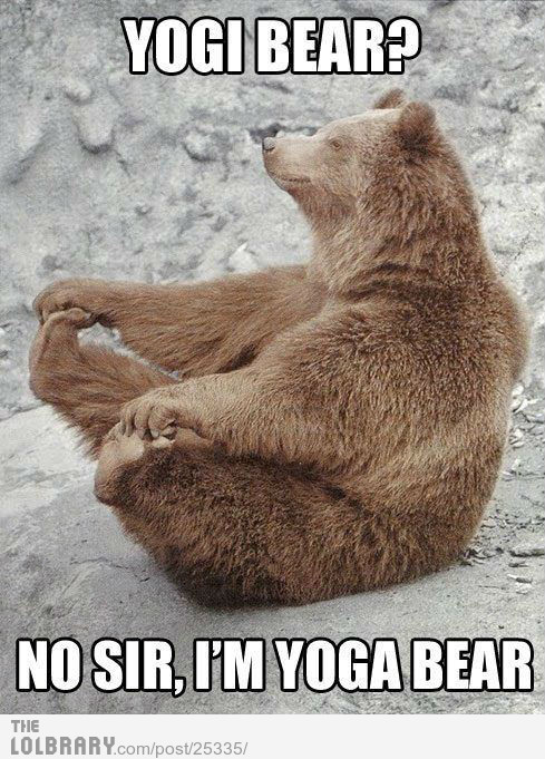 thefunnypicsblog:  Yogi Bear?Follow this blog for the best new funny pictures every day