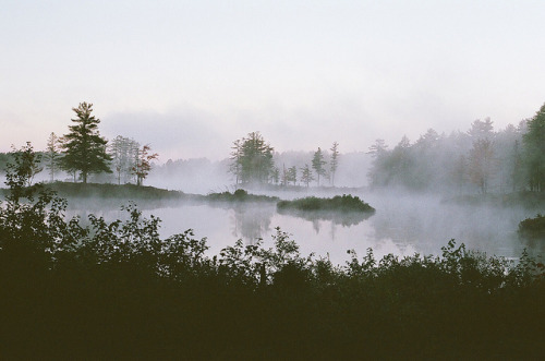 savvydarling:  untitled by Sarah Kate Vuona on Flickr.