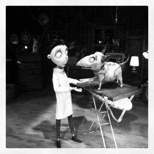 The Art of #Frankenweenie, le nostre foto della mostra dedicata a Tim Burton (via The Art of Frankenweenie, le nostre foto della mostra dedicata a Tim Burton | Il blog di ScreenWeek.it)