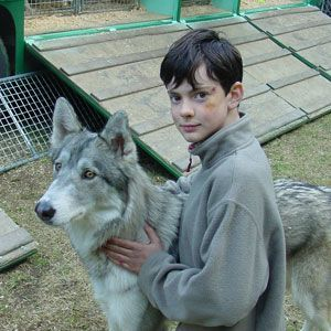 lamamama:  lamamama:  #oh good lord imagine Pevensies with direwolves #SO CUTE #and having a seething rivalry with the Stark kids at pet shows #Susan called hers Duchess just to outrank Sansa's Lady  #house pevensie #summer is coming so stfu starks   YESSSSSSSSSSS OH GOD YES look we know Calormen is to the south of Narnia and Archenland is to the north, and there's a big ocean to the east, but I can't remember anything to the west SO I NOW DECLARE THAT THAT'S WESTEROS AND SHIT IS EVENTUALLY GOING TO GO DOWN. I DON'T CARE IF I AM MESSING UP C.S. LEWIS AND GEORGE R.R. MARTIN'S GEOGRAPHY I JUST WANT HOUSE PEVENSIE VS HOUSE STARK sometimes it'll be a serious rivalry and sometimes it'll just be like Edmund and Jon meet up to discuss feeling out of place in their families Susan and Sansa have tea and lemon cakes and vent about their horrible exes  Lucy tries to teach Arya how to firebend