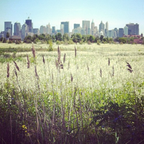 cpanlilio:  #goodmorning #nyc #nowhere #summer (Taken with Instagram)