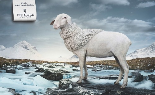 40 Cuddly Animals in Creative Advertising Campaigns(via: http://designyoutrust.com)