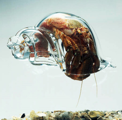 Artist Robert DuGrenier has been making glass shells for Hermit Crabs to live in for more than 15 years.
