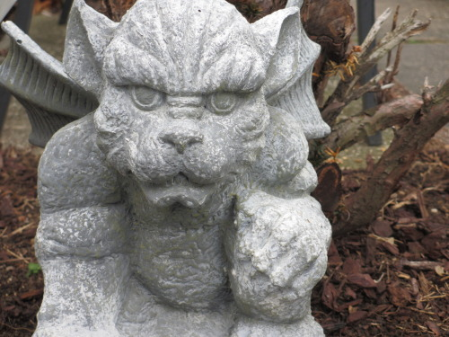 Gargoyle outside of Little Yoga House in Wantagh, NY.