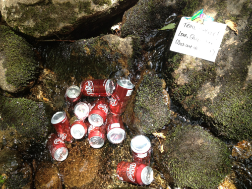 "Did my first real trail magic today!  Dr. Peppers I bought and left in a stream near a road crossing and Andover.    Day 95 Location:  Hall Mountain Lean-To AT Mile: 1933.3 Miles Hiked Today:  10.5  More rain today that slowed me down and I ended up taking refuge in this shelter.  The next shelter was quite a ways so I decided to end the day here with 3 other thru hikers:  Stray Dog, Buzz, Nutterbutter and Chipmunk.    Went in Andover today and had a huge breakfast this morning.  Bought a 12 pack of Dr. Pepper and brought it back to the trail crossing to put in the stream.  Left a note that said ""Love, Quicksilver"".  Later, while we were all in the shelter escaping the rain, thru hiker The Dude came up and said ""Who is Quicksilver??"" and thanked me.  He was super excited to have gotten a soda.  I was glad I actually got to see someone who got some.    Wanted to get more miles under my belt today but didn't want to tent in the rain.  I had a great time hanging out with this crew of thru hikers in the shelter though.  We talked about our favorite hostels and states and places along the trail.  Hoping to make tomorrow a bigger day."