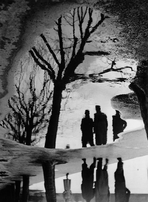 luzfosca:  Heinz Hajek-Halke Reflection in Puddle, 1940